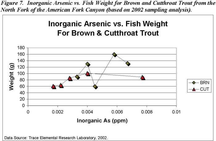 Inorganic Arsenic vs. Fish Weight for Brown and Cutthroat Trout from the North Fork of the American Fork Canyon (based on 2002 sampling analysis)