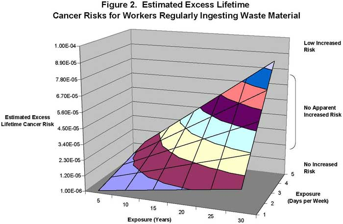Estimated Excess Lifetime Cancer Risks for Workers Regularly Ingesting Waste Material
