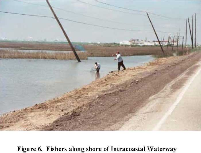 Fishers along shore of Intracostal Waterway
