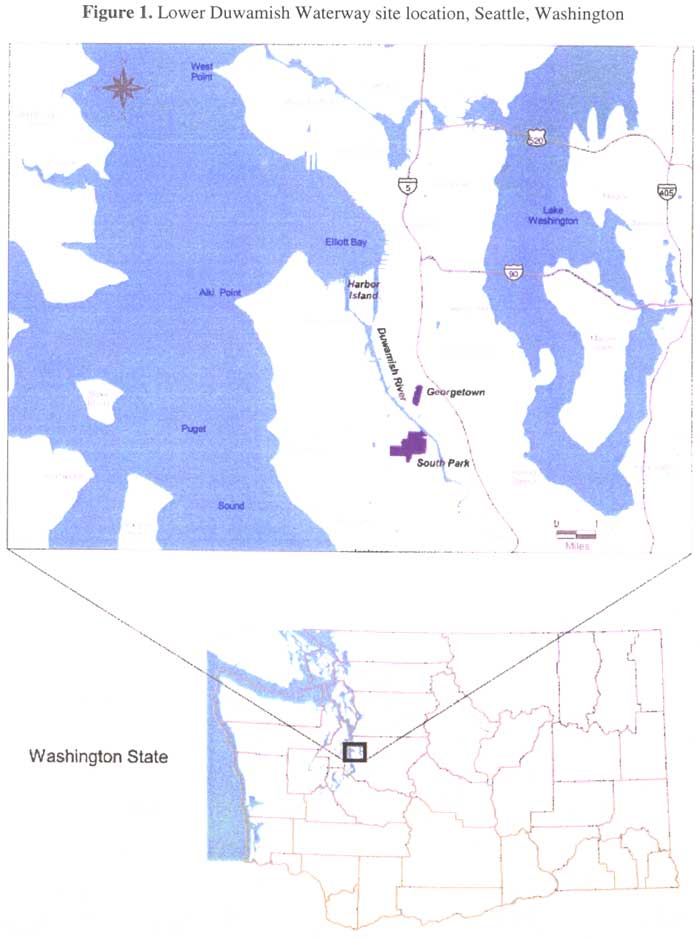 Lower Duwamish Waterway site location, Seattle, Washington