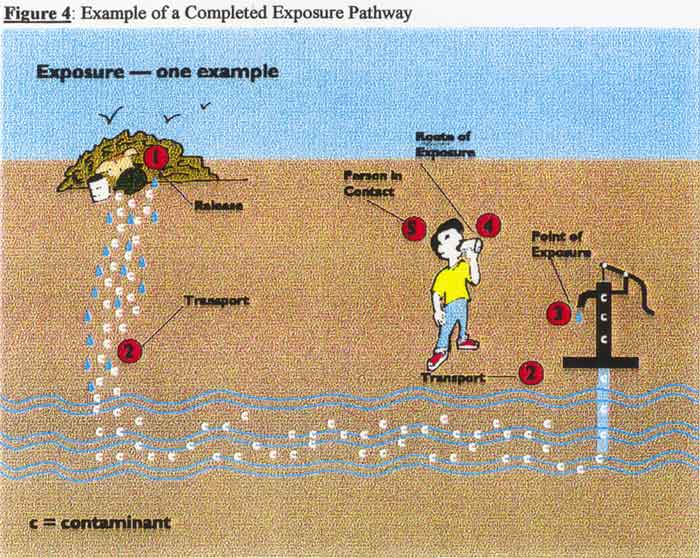 Example of a Completed Exposure Pathway