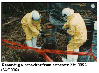 Removing a capacitor from cemetery 2 in 1992