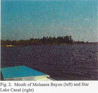 Mouth of Molasses Bayou and Star Lake Canal