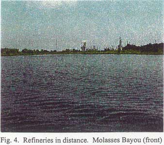 Refineries in distance. Molasses Bayou