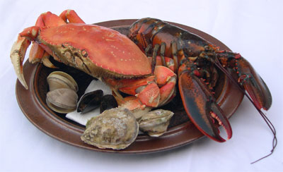 crab, lobster, clams, oysters, mussels