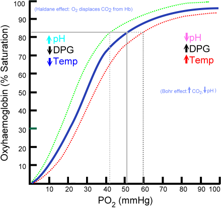 Figure 4. Oxy-Hemoglobin Dissociation Curve. Image Courtesy of Wikimedia Commons viewed in Grethlein SJ and Besa EC. (2012, June 25). Blood Substitutes. Medscape. Retrieved 10/22/13 from http://emedicine.medscape.com/article/207801-overview