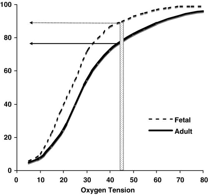 Figure 5. Representation of the different characteristics of oxygen binding in fetal vs. adult hemoglobin. The structural differences between fetal hemoglobin (HbF) and normal adult hemoglobin (HbA) result in HbF's leftward shift from the HbA dissociation curve. HbF has a higher affinity to bind oxygen at lower partial pressures. The transition from predominately HbF to predominately HbA varies by developmental stage. For example, at a PaO2 of 45 mmHg, an infant with more HbF than HbA may not show clinical cyanosis (typically seen at about 80% oxygen saturation) as would an adult or infant with higher amounts of HbA.