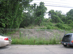 Fence line view of the Pile portion of the Borit site