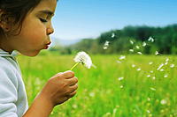 Child holding a flower in a clean environment