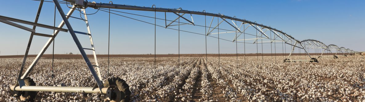 pivot circle irrigation equipment in cotton field