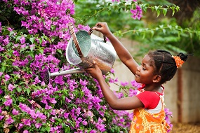 Girl watering flowers.
